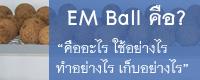 EM Ball คืออะไร